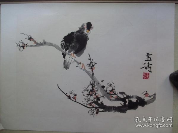早期木板水印單片8開:王雪濤  梅花小鳥