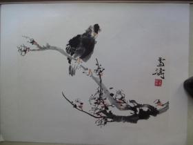 早期木板水印单片8开:王雪涛  梅花小鸟