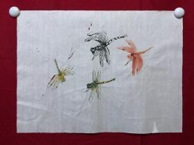 书画8729无款花鸟画习作