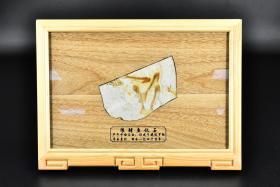 (丙7120)《中国辽西古生物化石》一枚 带支架 狼鳍鱼化石 产于辽宁省朝阳市 形成于晚侏罗纪 —早白垩纪 距今已有一亿四千万年 化石尺寸:12.5*10cm 相框整体尺寸:33*24*2.3cm。