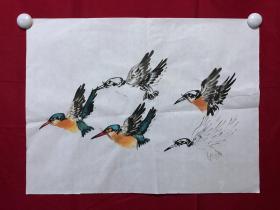 书画8727无款花鸟画习作