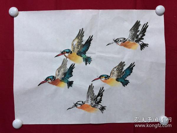 书画8737无款花鸟画习作