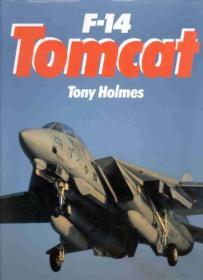 F-14 Tomcat-F-14雄猫式战斗机