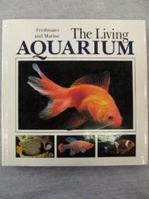 Living Aquarium-活水族馆