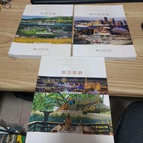 华高莱斯智库系列丛书:前沿旅游 城市生命线 特色小镇