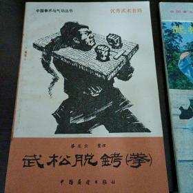 中国拳术与气功丛书
