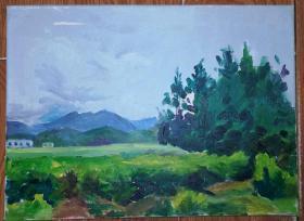 手绘布面油画:无款20190823-18(风景 40x30 已绷框)