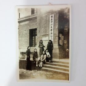 民国国立四川大学法学院师生合影照片一批12张350元