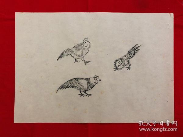 书画8957无款工笔白描花鸟画习作