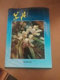 兰花-中国兰科植物集锦(全彩图 中英文对照)