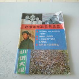小说大观1989年12期