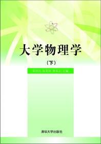 大学物理学 陆培民 等 主编 著作 新华文轩网络书店 正版图书