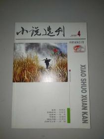 小说选刊(2010年第4期)