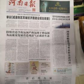河南日报2020年10月17日