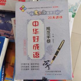 一手好字 魔力鸟练字王:中华好成语规范字模