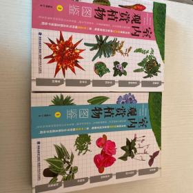 室内观赏植物图鉴1,2