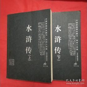 水浒传 (上下两册)