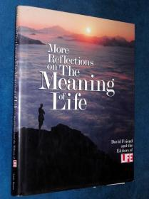 The Meaning of Life《生活》丛书 生命的意义