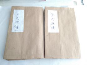 王氏族谱(共二册)