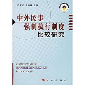 中外民事强制执行制度比较研究