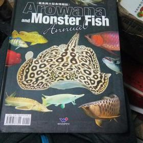 龙鱼与大型鱼情报志