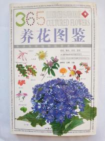 养花图鉴  ILLUSTRATED HANDBOOK  OF  CULTURED  FLOWERS