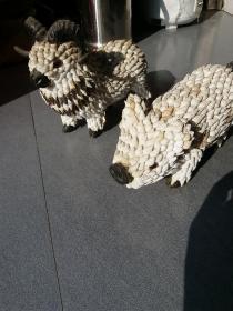 海螺工藝品。