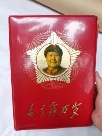 毛主席像章册