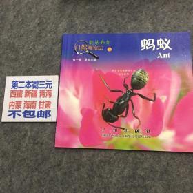 新法布尔自然观察法(第1辑)昆虫王国:蚂蚁