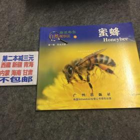 新法布尔自然观察法(第1辑)昆虫王国:蜜蜂