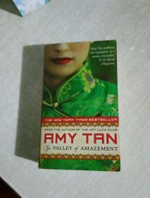 AMY TAN THE VALLEY of AMAZEMENT