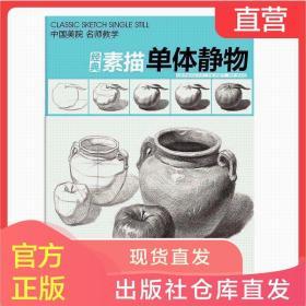 正版 经典全集系列丛书 杨建飞 经典素描单体静物 素描单体静物书
