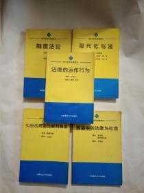 当代法学名著译丛  五种:《制度法论》《现代化与法》《法律的运作行为》《转变中的法律与社会》《纠纷的解决与审判制度》