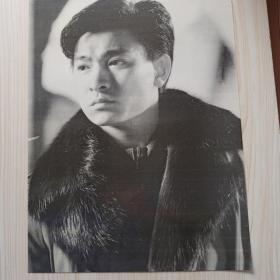 刘德华黑白海报