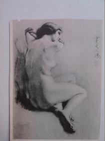 素描-裸体 裸女 徐悲鸿(雕印版)