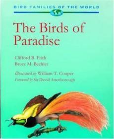 The Birds Of Paradise