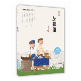 芝麻糖(大字版) 黄蓓佳 著 中国盲文出版社 正版书籍