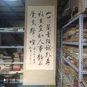 苏适书法 名人字画收藏 真迹 46*106