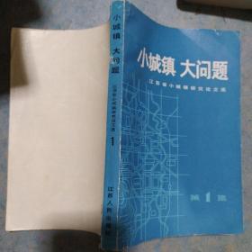《小城镇 大问题》江苏省小城镇研究论文选 1984年1版1印 馆藏 品佳 书品如图