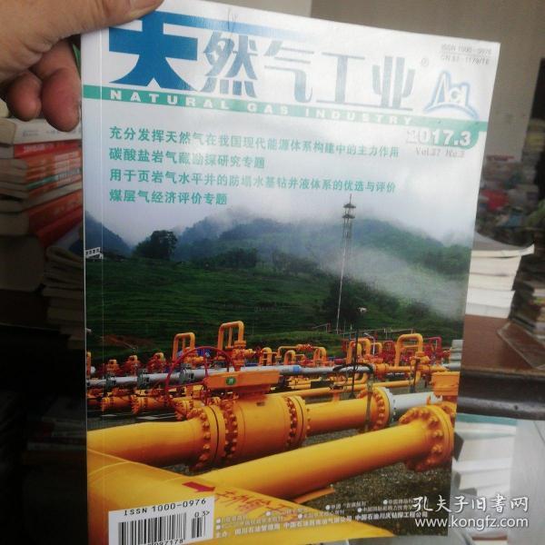 天然氣工業2017.3