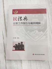民法典公安工作指引与案例精解