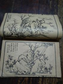民國 芥子園畫傳 青在堂菊譜七八九卷