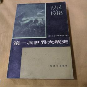第一次世界大戰史(1914-1918)(下冊)