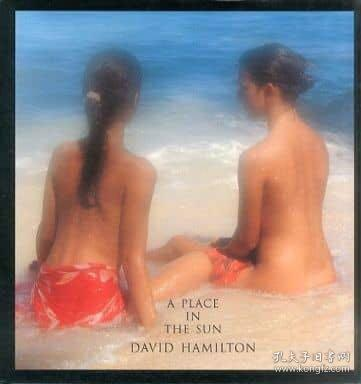 大衛漢密爾頓