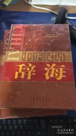 功能中华汉语辞海【全4册 精装】
