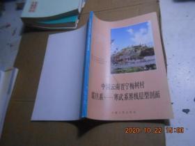 中國云南晉寧梅樹村震旦系——寒武系界限層型剖面