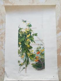 四季青( 中国画) 龚文桢作 印刷品 人民美术出版社1974.年11月一版一印 8开