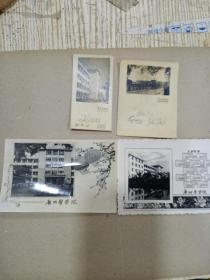 62年 广州医学院照片 年历卡 4张合售
