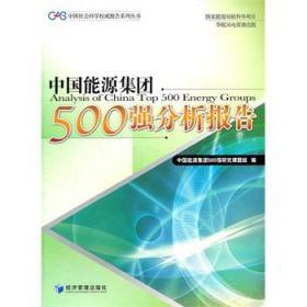 中国社会科学权威报告系列丛书:中国能源集团500强分析报告