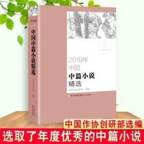 正版现货 2019年中国中篇小说精选 中国作协创研部2019 优秀中篇?
